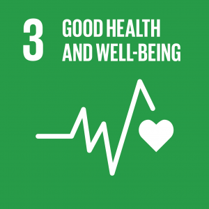 SDG 3 Health and Well Being