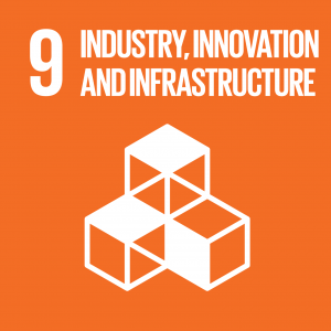 SDG 9 Industry Innovation and Infrastructure