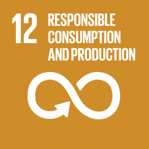 SDG 12 Consumption and Production