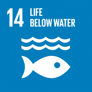 SDG 14 Life Below Water