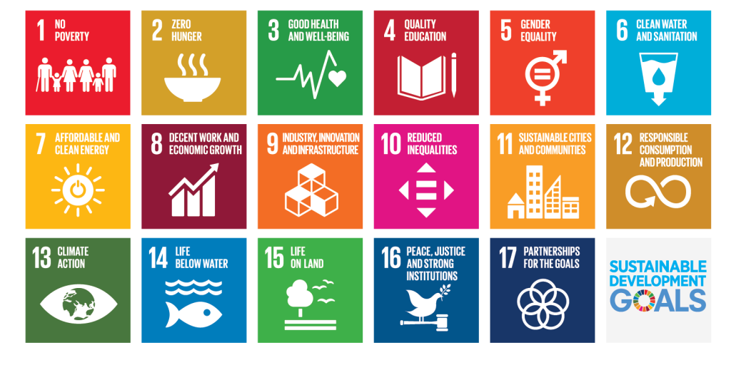 All 17 Sustainable Development Goals