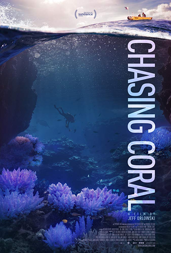 chasing coral-poster