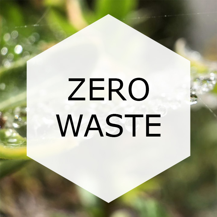 ZERO WASTE BADGE